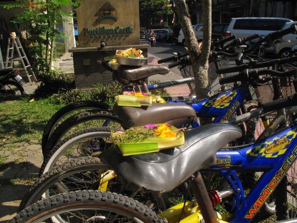 bike offerings