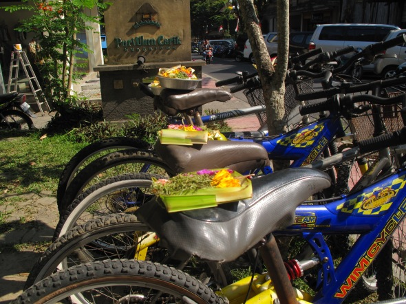 bike offerings