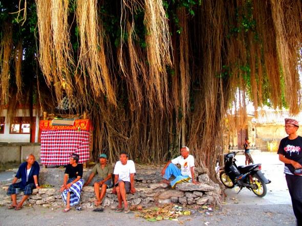 Locals Under Tree